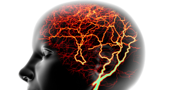 neuro segment image